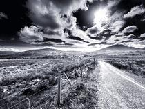 Straße ins Nirgendwo von Daniel Heine