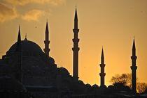 Yeni Camii, Istanbul... 2 by loewenherz-artwork