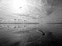 Salt Lagoon B&W by florin