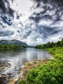 Ufer des Lough Leane von Daniel Heine