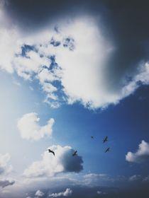 Blue Sky by Paulina J. Kozlowska