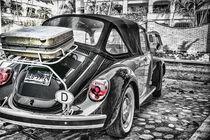 Volkswagen Beetle by Lev Kaytsner