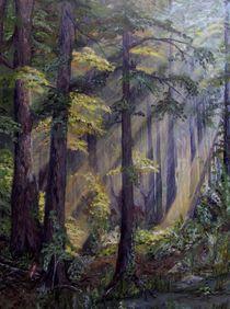 Sommertag im Wald von Elisabeth Maier
