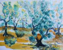 Olivenhain, Catalunia von Gerhard Stolpa