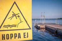 Nicht Springen ! von hoernet-photographie