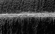 splash by Georgi Koncaliev