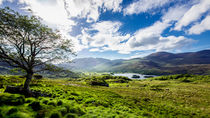 Ladies View Killarney by Daniel Heine