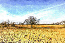 The Farm Tree by David Pyatt