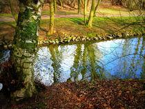 Und dazwischen fließt ein Bach... von Ulrike Ilse Brück