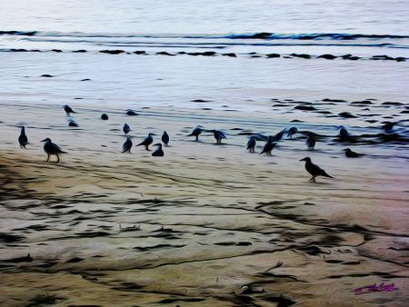 Beach-in-galicia-01