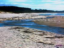 Gulls on the Beach VIII by Carlos Segui