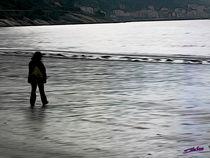 Walking along the Beach von Carlos Segui