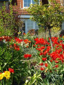 Frühlingsgarten  by gscheffbuch