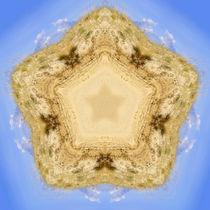 Dünenstern, Star of dune and heaven von Sabine Radtke