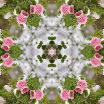 Rosenmandala, Mandala of roses by Sabine Radtke