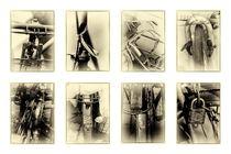 ASIAN KALEIDOSCOPES - CYCLED VIII by Thomas Kretzschmar
