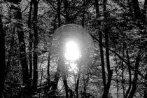 Siehst du das Licht von haldenslebener