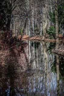 Wasserspiegelung von Marianne Drews