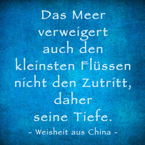 WEISHEIT AUS CHINA by crazyneopop