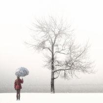 Neve-070