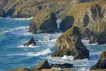 Sea Stacks at Bedruthan by Paul Martin