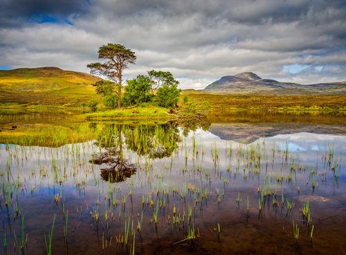 20140531-scotland-1874