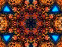 Coral Rainbow Mandala by Richard H. Jones