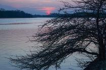 Sundown von Thomas Matzl