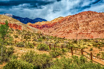 Red Rock Canyon von Lev Kaytsner