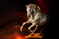 Liquid Fire von artfulhorses-sabinepeters