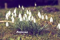Frühling von Kurt Gruhlke