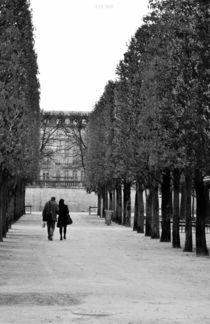 Liebe in Paris von Luigi Luca Genua