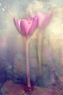 Img-7097-mooi-texture-watercolor-zonder-tekst