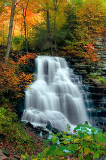 October Foliage Surrounds Erie Falls by Gene Walls