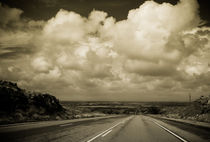 The Road to Roswell by Claudia Botterweg