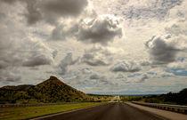 The Long Road by Claudia Botterweg