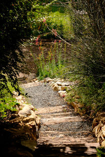 Rustic stairs in a garden by Claudia Botterweg