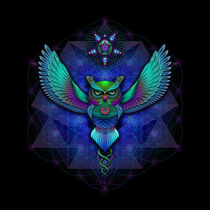 Owl von Ralf Schuetz