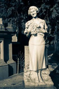 The Mother von Adrianne Bottrell