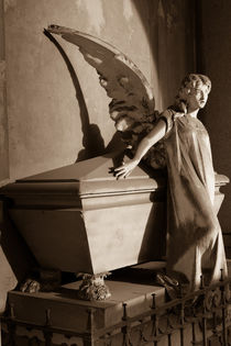 Milano Angel by Adrianne Bottrell