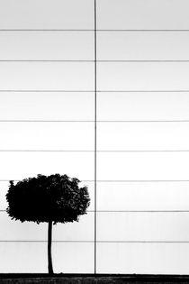 Das singende klingende...  von Bastian  Kienitz