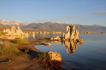 Mono Lake 1 by Bruno Schmidiger