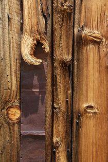 Wood-Art 1 von Bruno Schmidiger