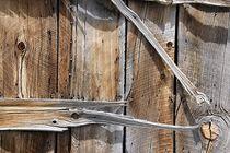 Holzkunst von Bruno Schmidiger