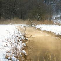 'goldener Bachlauf' by Thomas Matzl