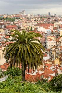 Lisboa 3435 von Mario Fichtner