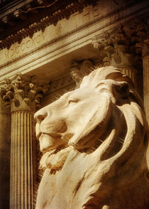 New-york-december-and-march-044-nypl-lion