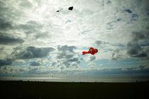 Himmelsfisch, Nemo in the sky by Sabine Radtke