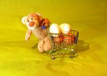 Kommst du mit zum Eierfärben? von Olga Sander