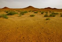 THE GREAT WIDE OPEN – GOLDEN GOBI III by Thomas Kretzschmar